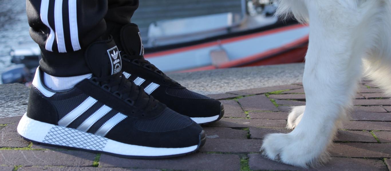 Anprobiert: adidas Marathon x 5923 mit Hund